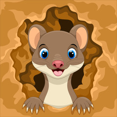 Cute weasel out of the hole