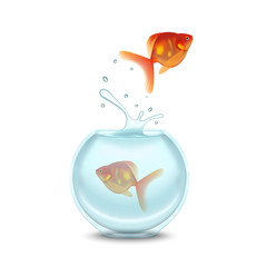 Gold Fish and Aquarium on a White Background. Vector