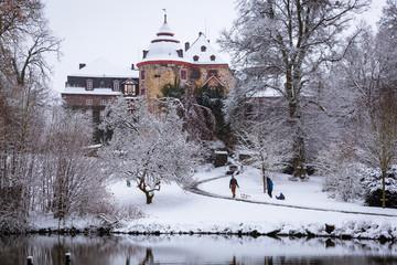 Schlosspark Laubach im Winter II