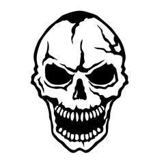 tete_de_mort_skull_halloween_208