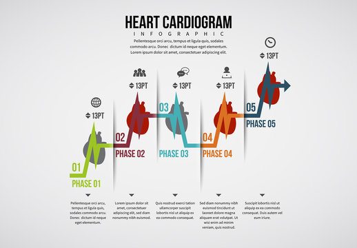 Heart Cardiogram Infographic