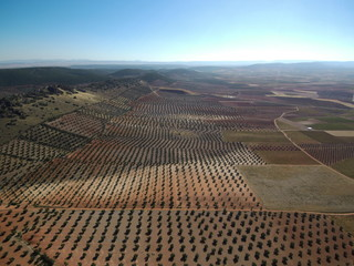 Drone en Campos de olivos en Jaen (Andalucia, España) Fotografia aerea