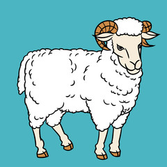 Illustration of Sheep-Vector Illustration
