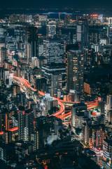 Photo sur Aluminium Tokyo Night view of Tokyo, Japan