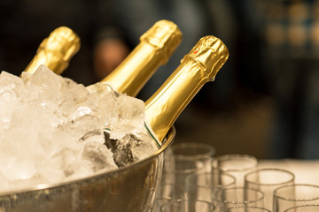 Champagne in bucket with ice.