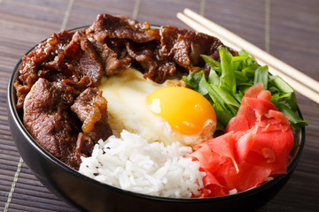 Japanese beef with rice, egg and onion closeup on the table. horizontal