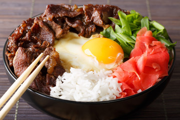 Japanese Food: gyudon beef with rice and egg close-up in a bowl. horizontal