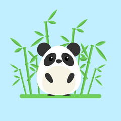 Cute baby panda standing between the bamboo on blue background