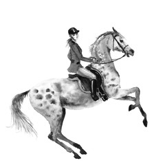 Horseback rider and rearing dapple grey horse. Black and white monochrome watercolor or ink hand drawing illustration. Horseman girl on stallion. England equestrian sport traditional hunting style.