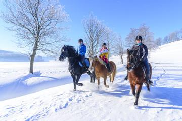 herrlicher Wintertag für einen Ausritt