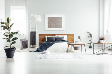 Plant in spacious white bedroom