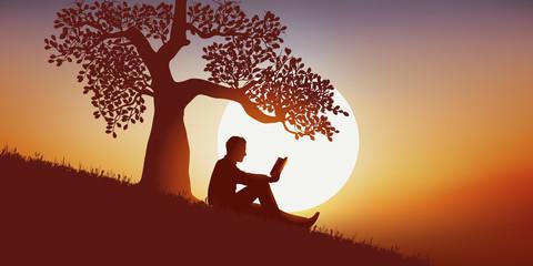 livre - lire - lecture - littérature - librairie - détente - campagne - arbre - coucher de soleil - loisir - nature