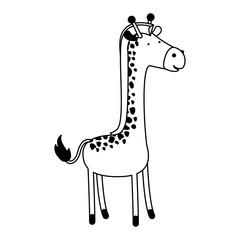 giraffe cartoon black silhouette in white background vector illustration