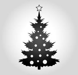 Weihnachtsbaume misburger wald 2019