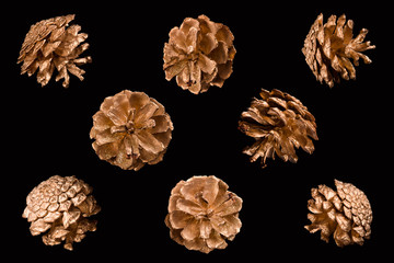 Holiday decorations of golden pine cones. Golden pine cones on a black background