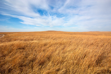 Flint Hills tallgrass prairie in Kansas. Wall mural