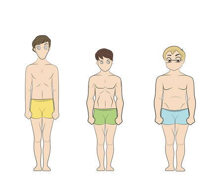 Male body types: Ectomorph, Mesomorph and Endomorph. Skinny, muscular and fat bodytypes. Fitness and health illustration.