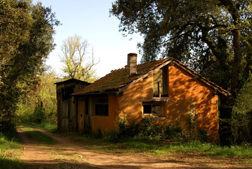 Deserted barnhouse in abandoned village of La Mouthe, Dordogne Valley, Southern France