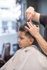 the boy is cut in hairdressing salon