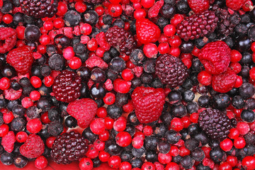 Frozen mixed berries as background. Blueberries,raspberries black berries and currant mulberry texture pattern. Berries.
