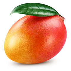Ripe mango isolated
