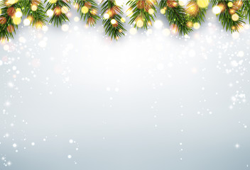 Shining winter background with fir branches.