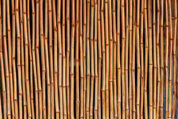 Texture of wooden boards and planks. Bamboo sticks.