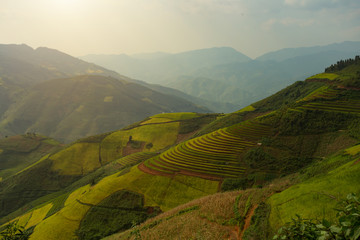 Vietnam Mu Cang Chai  Bai Rice terrace curved landscape on the mountain