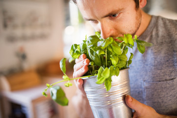Young man cooking, holding herbs.
