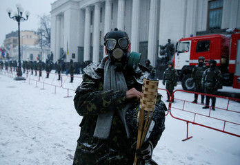 An anti-government protester wearing a gasmask stands in front of the Parliament building in Kiev