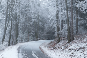 Winter road in the frozen forest.