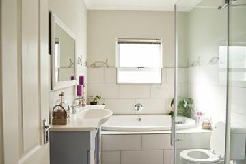 Interior of the modern bathroom in a contemporary suburban home