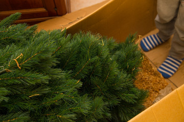 close up christmas tree inside the box with baby.jpg