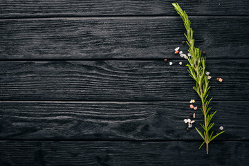 Wall Mural - Rosemary and spices. On a wooden background. Free space for your text. Top view.