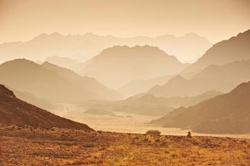 Valley in the Sinai desert