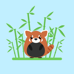 Cute baby red panda standing between the bamboo on blue background