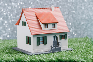 Picture of toy house on green grass