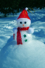 Christmas Snowman in snow