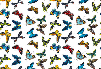 Seamless pattern with insect. Butterflies, bugs, dragonflies. Sketches. Hand drawn watercolor illustration.