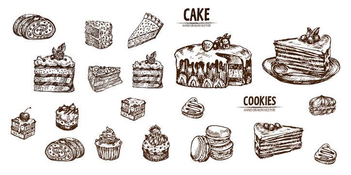 Digital vector detailed line art sliced cake