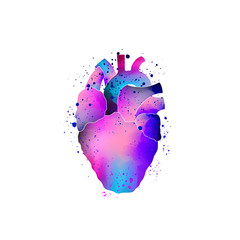Anatomical human heart isolated. Vector illustration. Multicolored gradient object with splashes, paint effect.