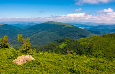 green hill of polonina Runa in summer. Fine weather with some clouds on a blue sky in mountainous landscape of Carpathian region