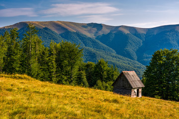 shed on a grassy slope in mountains. beautiful scenery in Carpathians