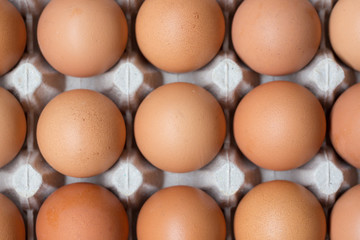 Close up of Chicken eggs in package