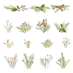 Big collection of christmas plants and branches