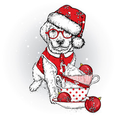 A beautiful puppy in a New Year's cap and glasses. Vector illustration. A pedigree dog in clothes and accessories. New Year's and Christmas. Vintage cups and Christmas balls.
