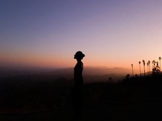 LA silhouette 1
