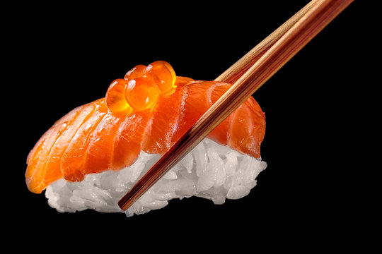 Salmon sushi nigiri in chopsticks isolated on black background.Close up.
