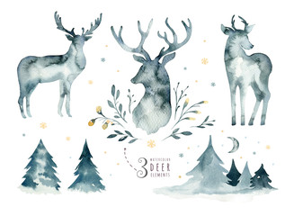 Wall Mural - Watercolor closeup portrait of blue deer. Isolated on white background. Hand drawn christmas indigo illustration. Greeting card animal winter design decoration