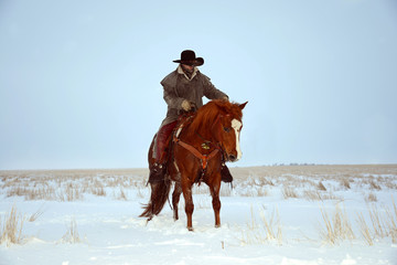 Cowboy Riding a Horse in the Snow